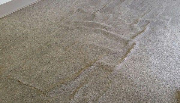 عدم برطرف کردن بهموقع کیسی فرش باعث دائمی شدن آن میشود